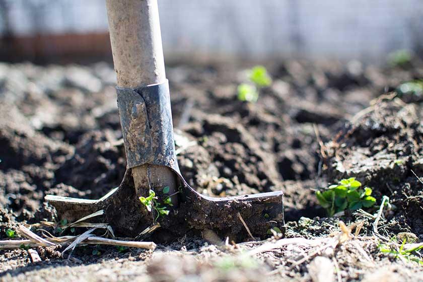 افزایش  ۴۰ درصدی بهره وری آب با مدیریت خاک