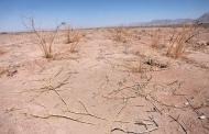 پیگیری طرح تاسیس مرکز پایش منطقهای خشکسالی جنوبغرب آسیا در ایران