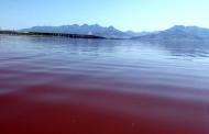 افزایش 82 سانتیمتری تراز آب دریاچه ارومیه