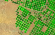 آینده کشاورزی فاریاب: بقاء یا فناء