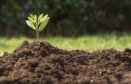 اقدامات فناورانه و دانشبنیان برای حفظ منابع خاک حمایت میشود