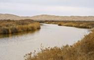 حقابه گاوخونی، انتقال آب دریای خزر و بیتوجهی به ملاحظات زیستمحیطی