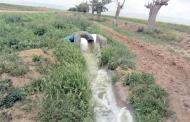ایران پنجمین کشور دنیا در  آبیاری مزارع با فاضلاب