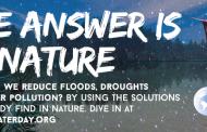 روز جهانی آب 2018 : طبیعت برای آب