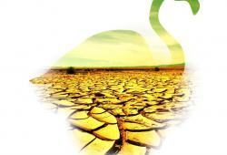 پوستر دریاچه ارومیه/ طرحی از مهدی بادیه پیما