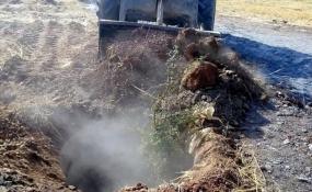 67 درصد چاههای غیرمجاز  مسدود شده، طی چهار سال اخیر بوده است