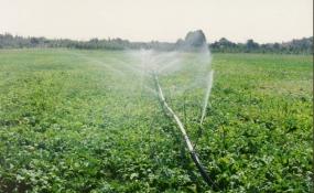 به سوی الگوی مصرف صحیح آب در بخش کشاورزی