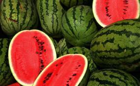 ۲۸۶ لیتر آب برای تولید هر کیلو هندوانه در ایران مصرف می شود
