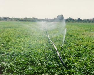 تبدیل مسئله آب به یک گفتمان ملی در دولت یازدهم/ بدون آموزش بهرهبرداران سرمایه گذاری در بخش آب نمیتواند موفق باشد