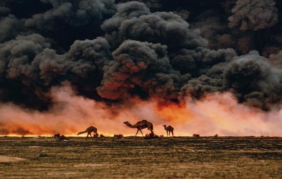 گری لوئیس/امنیت انسانی در گرو امنیت محیط زیست