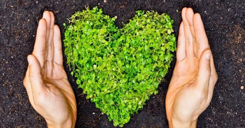 همایش بین المللی محیط زیست