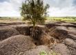 مقابله با فرسایش خاک سرعت میگیرد