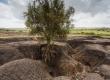 هشدار نسبت به فرسایش سالانه یک میلیارد تن خاک کشور