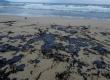 نفوذ لکههای نفتی به اکوسیستم دریا!